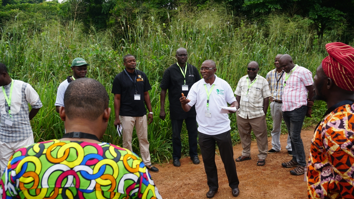 ACAI Tools For Cassava Agronomy Advice Are Ready For Nigerian Farmers